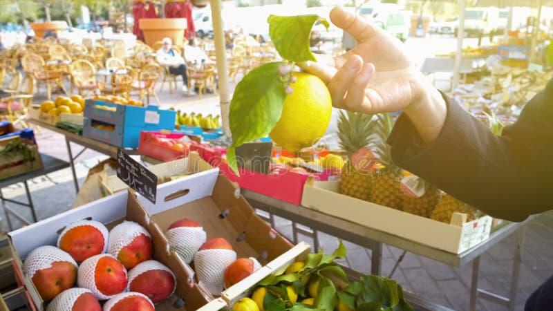 Το αρσενικό καλύτερο εκμετάλλευσης χεριών των πρόσφατα συλλεχθε'ντων λεμονιών στην τοπική αγορά φρούτων στοκ εικόνες