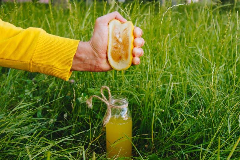 Το αρσενικό χέρι συμπιέζει το χυμό εσπεριδοειδούς σε ένα μπουκάλι της σπιτικής λεμονάδας στη χλόη στη φύση υπαίθρια κινηματογράφη στοκ εικόνες