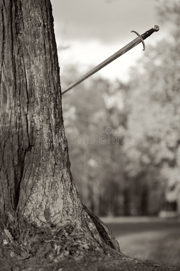 το αρχαίο δέντρο ώθησης ξι&phi στοκ εικόνα με δικαίωμα ελεύθερης χρήσης