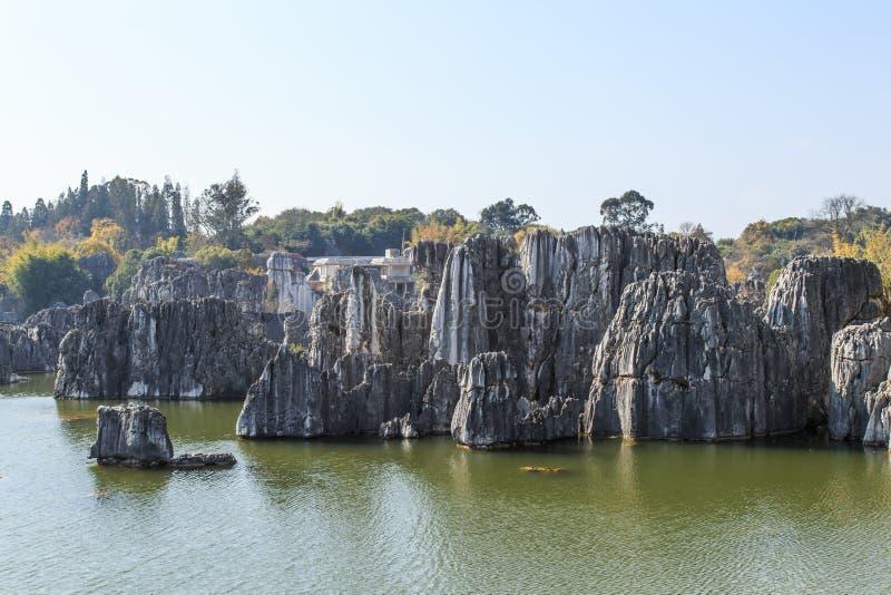 Το δασικό τοπίο πάρκων γεωλογίας πετρών στοκ φωτογραφίες