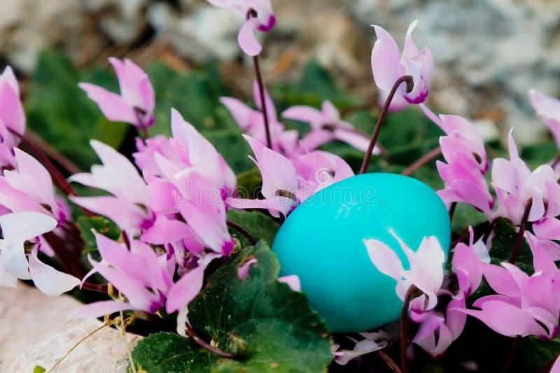 Το αυγό χρώματος μεντών που κρύβεται σε μια δέσμη τα λουλούδια στοκ φωτογραφία