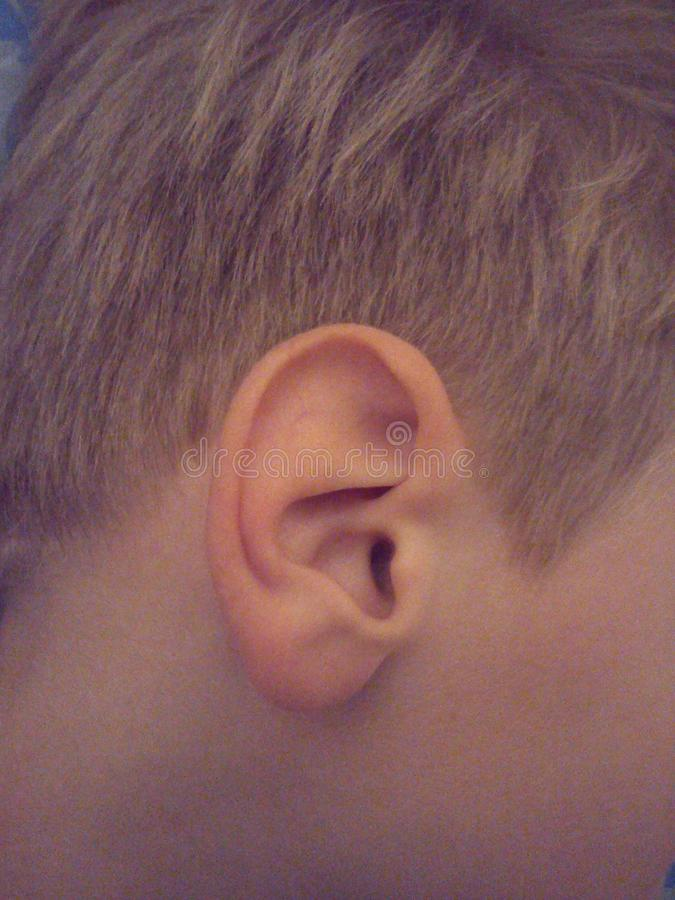 Το αυτί του μωρού Το αυτί του παιδιού Ανθρώπινο αυτί Αυτί αγοριού Οίκος Ακρόαση στοκ εικόνες με δικαίωμα ελεύθερης χρήσης