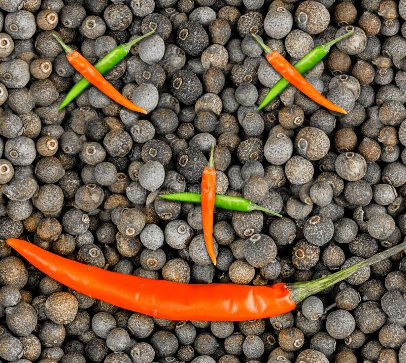 Το αφηρημένο υπόβαθρο ενός φυτικού προσώπου, καυτοί λοβοί πιπεριών διέσχισε τα μίνι μάτια μύτης τσίλι και ένα μεγάλο χαμόγελο μαύ στοκ εικόνες