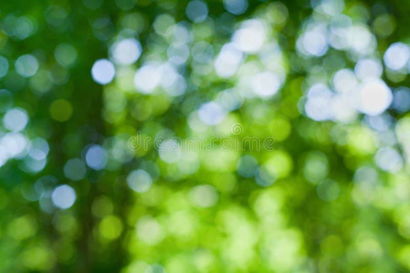 Το αφηρημένο φυσικό υπόβαθρο θαμπάδων, τα φύλλα, πράσινο bokeh στοκ εικόνα με δικαίωμα ελεύθερης χρήσης