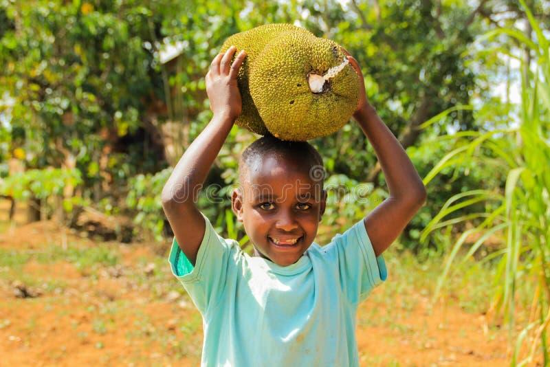 Το αφρικανικό παιχνίδι παιδιών με τα φρούτα από τους γονείς του καλλιεργεί σε μια οδό στην Καμπάλα στοκ εικόνες
