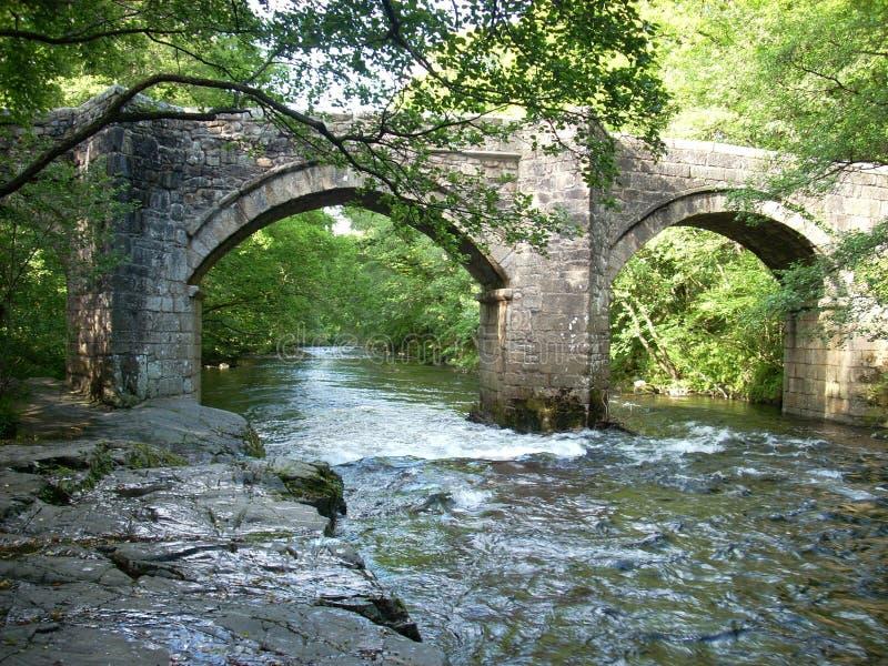 Το βέλος ποταμών στο Devon στοκ εικόνες με δικαίωμα ελεύθερης χρήσης