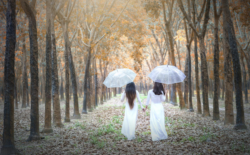 Το βιετναμέζικο κορίτσι δύο στο παραδοσιακό μακρύ φόρεμα ή το AO Dai πηγαίνει στο τέλος του δρόμου στο λαστιχένιο δάσος στοκ εικόνες με δικαίωμα ελεύθερης χρήσης