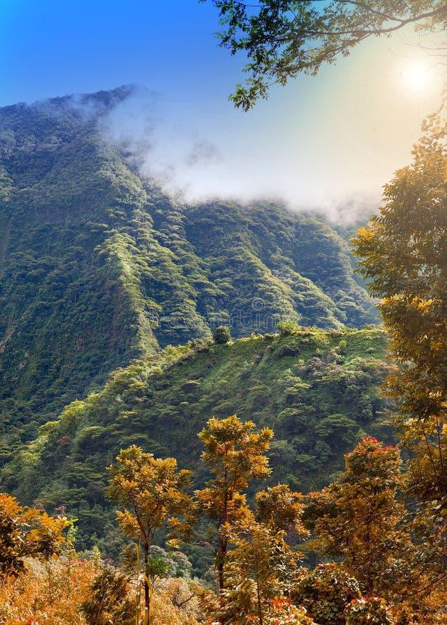 Το βουνό σε μια ομίχλη Πολυνησία Ταϊτή στοκ εικόνες με δικαίωμα ελεύθερης χρήσης
