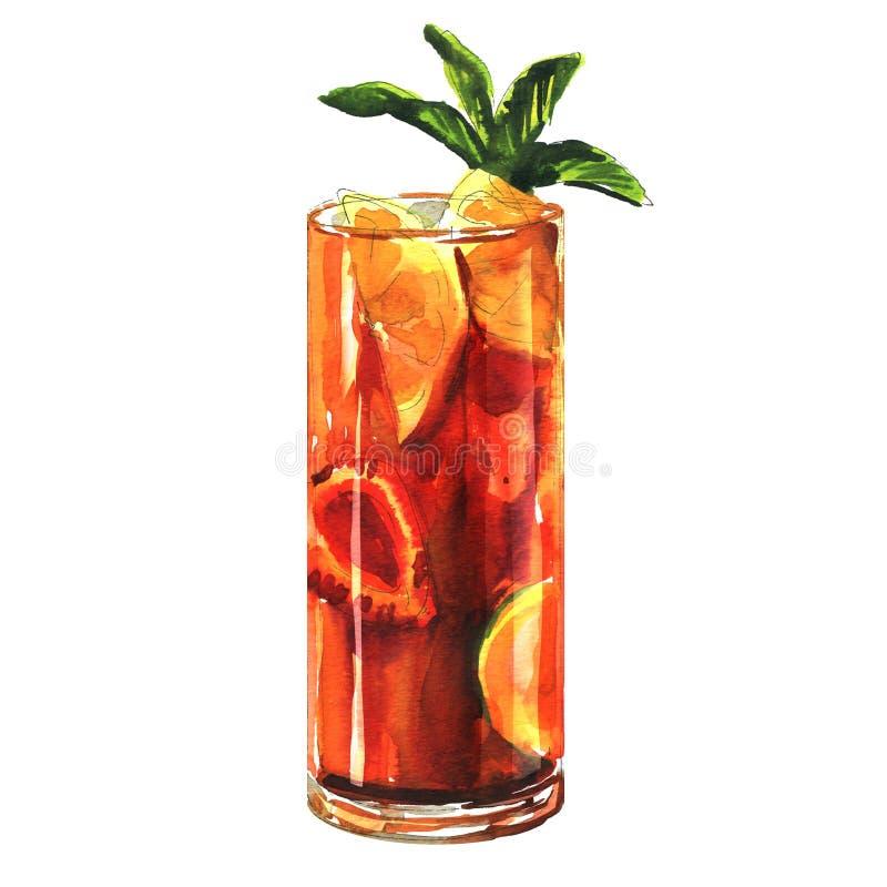 Το γλυκό κόκκινο coctail με τα φύλλα μεντών, sangria με τα φρούτα και τα μούρα απομόνωσε συρμένη τη χέρι απεικόνιση watercolor στ στοκ εικόνες