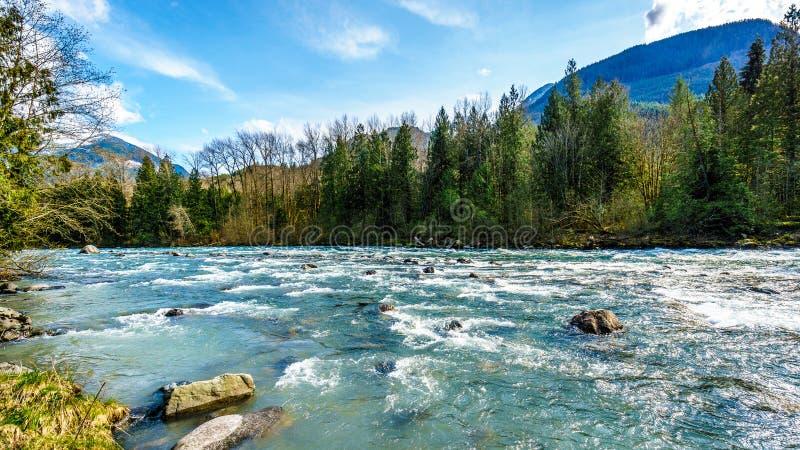 Το γρήγορα ρέοντας κρύσταλλο - σαφή νερά του ποταμού Chilliwack στοκ φωτογραφία