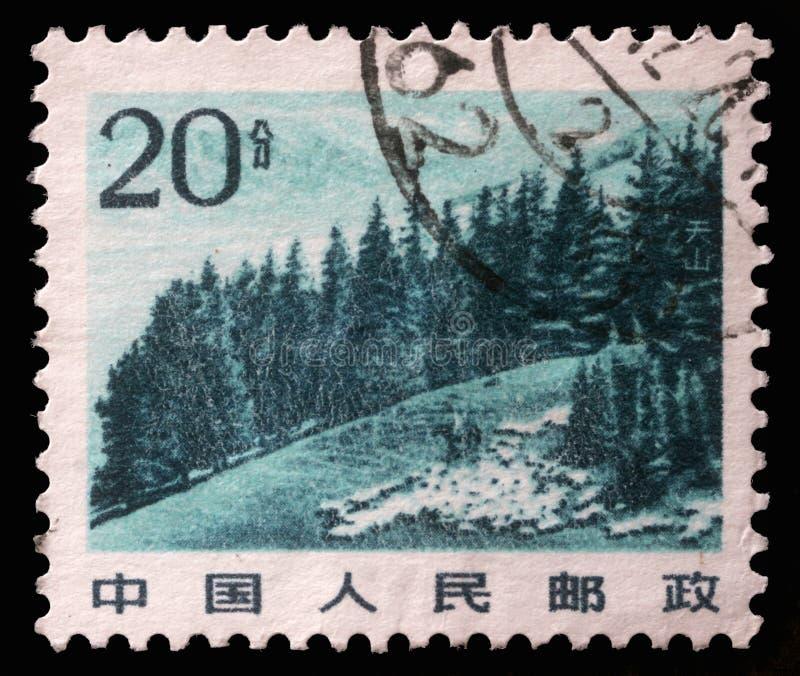 Το γραμματόσημο που τυπώνεται στην Κίνα παρουσιάζει εικόνα της κινεζικής ορεινής περιοχής με τα δέντρα πεύκων στο βουνό Tianshan στοκ εικόνες