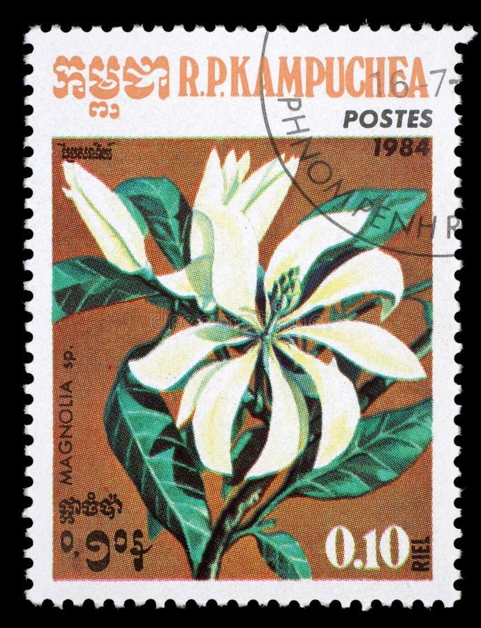 Το γραμματόσημο που τυπώνεται στην Καμπότζη, απεικονίζει ένα λουλούδι Magnolia στοκ φωτογραφία