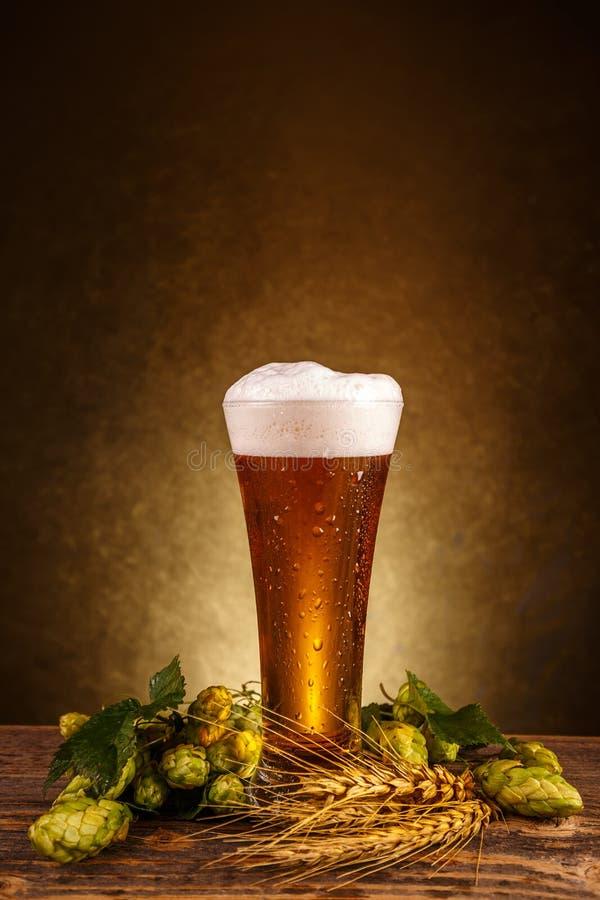 το γυαλί μπύρας απομόνωσε το λευκό στοκ φωτογραφία