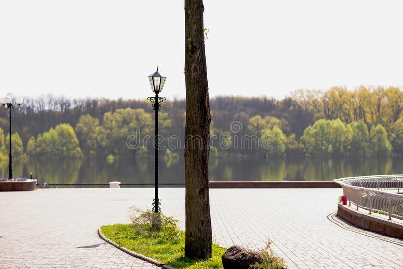Το δέντρο και το φανάρι είναι στο πάρκο στοκ φωτογραφίες με δικαίωμα ελεύθερης χρήσης