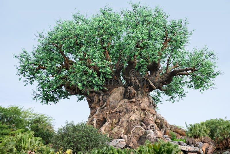 Το δέντρο της ζωής στον κόσμο της Disney στοκ εικόνες