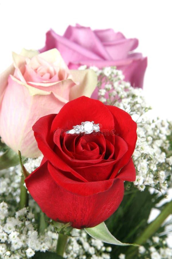 το δαχτυλίδι αυξήθηκε στοκ φωτογραφία με δικαίωμα ελεύθερης χρήσης
