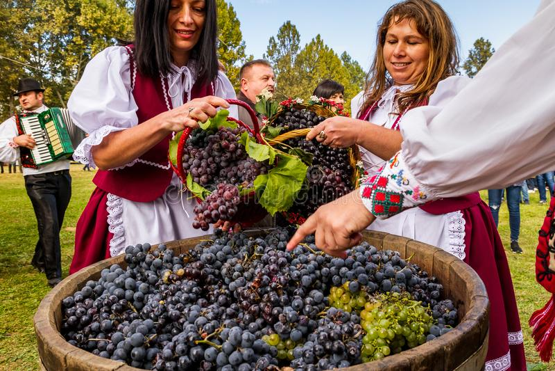 Το δεύτερο εθνικό φεστιβάλ Bobovischenske Grono έγινε σε Zaka στοκ εικόνες