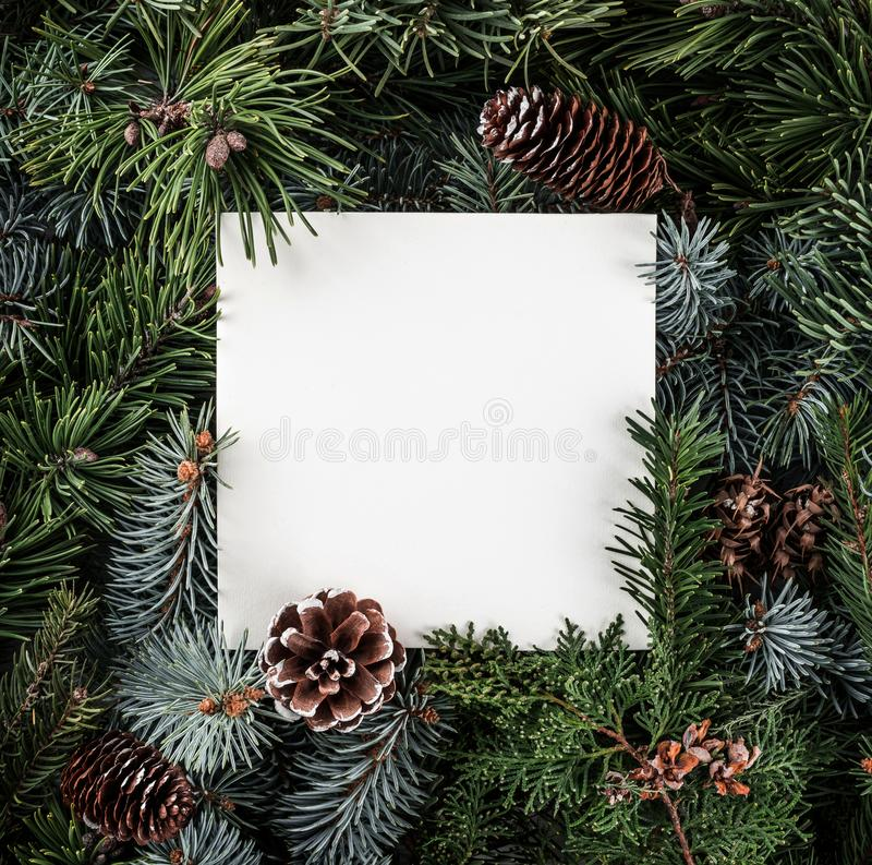 Το δημιουργικό σχεδιάγραμμα φιαγμένο από χριστουγεννιάτικο δέντρο διακλαδίζεται με τη σημείωση καρτών εγγράφου, κώνοι πεύκων Χρισ στοκ φωτογραφία με δικαίωμα ελεύθερης χρήσης