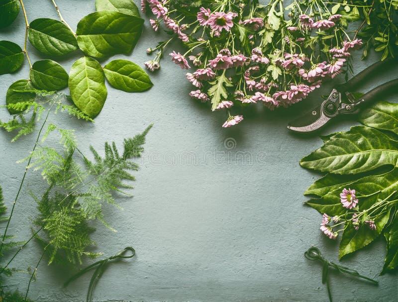 Το διάστημα εργασίας ανθοκόμων με πολλές φρέσκα πράσινα φύλλα, ρόδινες λουλούδια και ψαλίδες, επίπεδα βάζει, πλαίσιο στοκ εικόνες