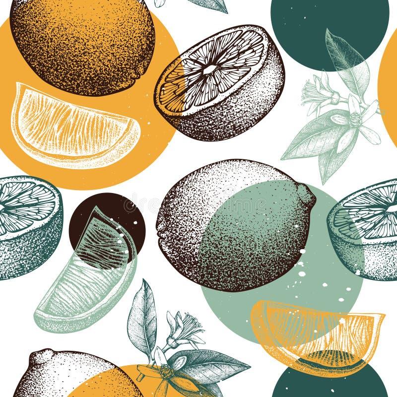 Το διανυσματικό άνευ ραφής σχέδιο με τα συρμένα χέρι πορτοκαλιά φρούτα μελανιού, τα λουλούδια και τα φύλλα σκιαγραφούν Εκλεκτής π διανυσματική απεικόνιση