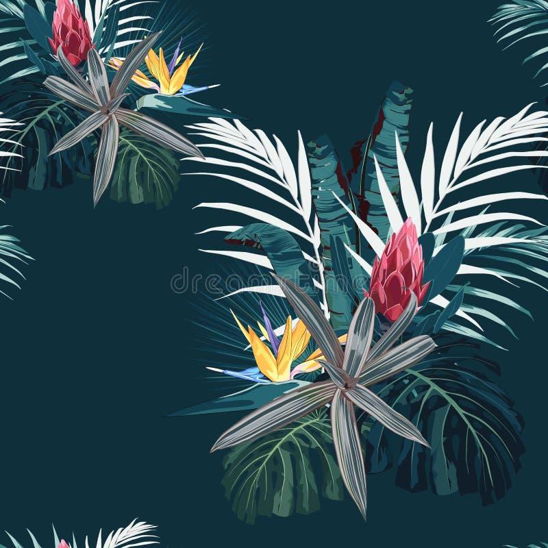 Το διανυσματικό άνευ ραφής τροπικό σχέδιο, το ζωηρό τροπικό φύλλωμα, με τα φύλλα monstera φοινικών και το protea, strelitzia ανθί διανυσματική απεικόνιση