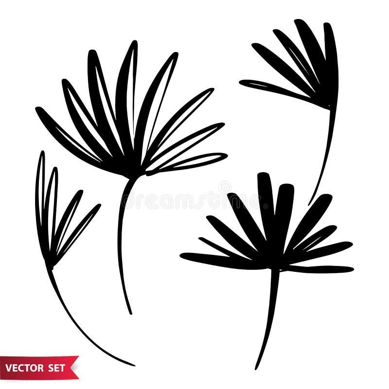 Το διανυσματικό σύνολο φύλλων παλαμών σχεδίων μελανιού, μονοχρωματική καλλιτεχνική βοτανική απεικόνιση, απομόνωσε τα floral στοιχ ελεύθερη απεικόνιση δικαιώματος