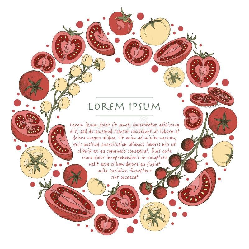 Το διανυσματικό φυτικό στεφάνι με τις ντομάτες doodle περιβάλλει το πρότυπο για τα κοινωνικές μέσα και τη ευχετήρια κάρτα απεικόνιση αποθεμάτων