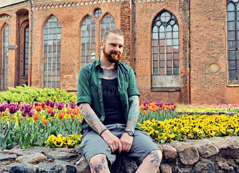 Το διαστισμένο γενειοφόρο αρσενικό hipster κάθεται σε έναν τοίχο πετρών στοκ φωτογραφία