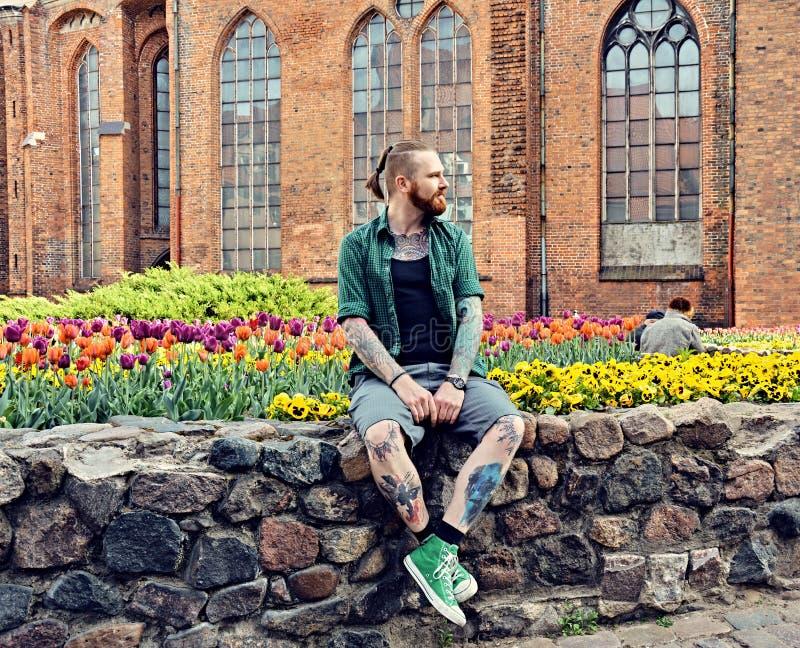 Το διαστισμένο γενειοφόρο αρσενικό hipster κάθεται σε έναν τοίχο πετρών στοκ φωτογραφίες