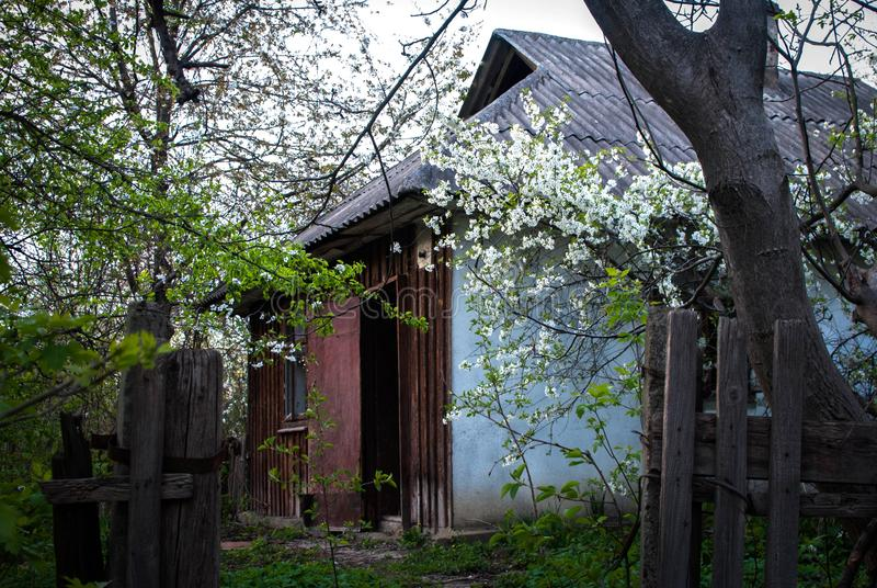 Το εγκαταλειμμένο κυνήγι κατοικεί παλαιά ξύλινα ξύλα καταστροφών καλυβών φθινοπώρου στα δάσος την άνοιξη, ελαφριά ημέρα ήλιων στοκ φωτογραφία