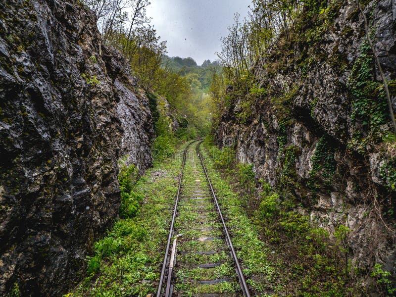 Το εγκαταλειμμένο τραίνο ακολουθεί κοντά σε Anina, Ρουμανία στοκ φωτογραφία με δικαίωμα ελεύθερης χρήσης