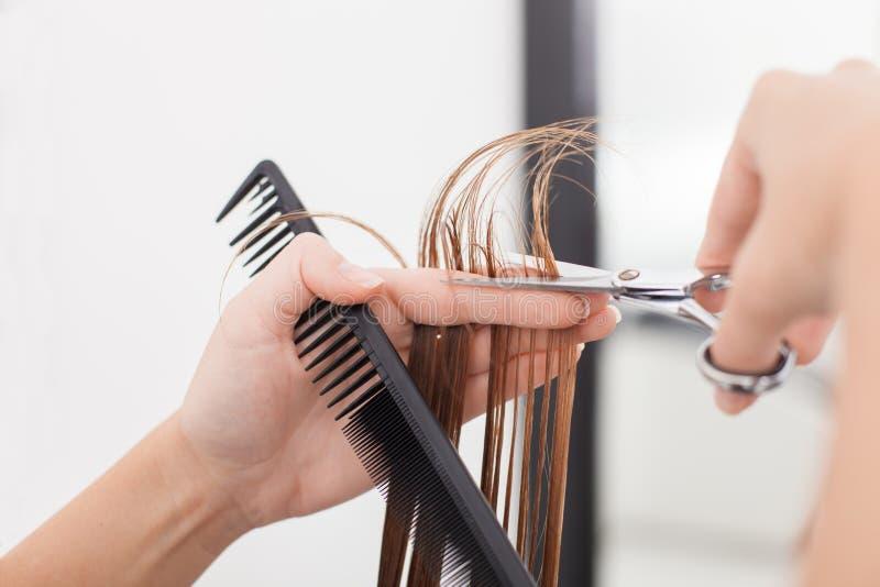 Το ειδικευμένο νέο hairstylist κάνει ένα κούρεμα στοκ εικόνα