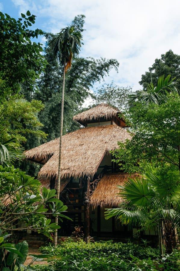 Το εκλεκτής ποιότητας άχυρο το εξοχικό σπίτι στεγών στον τροπικό δασικό κήπο, Κ στοκ εικόνες