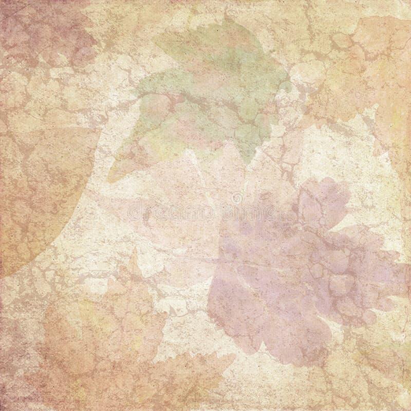 Το εκλεκτής ποιότητας έγγραφο κολάζ υποβάθρου - φύλλο Watercolor φθινοπώρου - στενοχώρησε - πτώση - ουδέτερη - ψηφιακό έγγραφο στοκ εικόνες με δικαίωμα ελεύθερης χρήσης