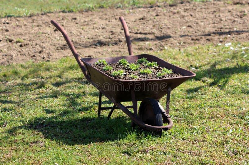 Το εκλεκτής ποιότητας αναδρομικό μέταλλο οξύδωσε wheelbarrow το κάρρο κατασκευής που γέμισαν με το υγρές χώμα και τις εγκαταστάσε στοκ εικόνα