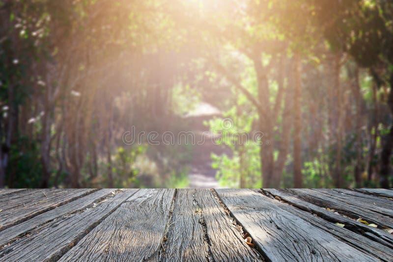 Το εκλεκτής ποιότητας ύφος ρετουσαρίσματος υποβάθρου landscap στη φύση στοκ φωτογραφίες με δικαίωμα ελεύθερης χρήσης