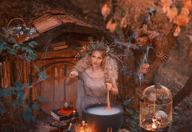 Το ελκυστικό νέο κορίτσι με τα ξανθά μαλλιά με ένα καταπληκτικό πολύβλαστο στεφάνι στο κεφάλι της στο δάσος προετοιμάζει έναν μεγ στοκ εικόνες