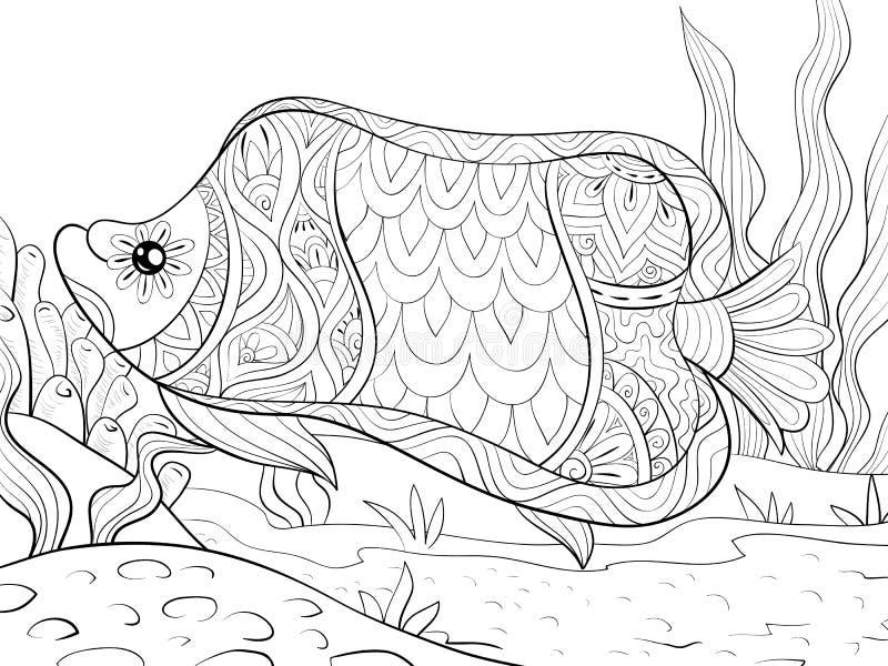 Το ενήλικο χρωματίζοντας βιβλίο, σελιδοποιεί μια χαριτωμένη εικόνα ψαριών για τη χαλάρωση διανυσματική απεικόνιση