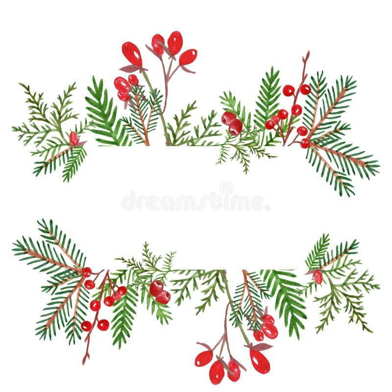 Το εορταστικό έμβλημα Χριστουγέννων με συρμένο το χέρι χειμώνα watercolor οι εγκαταστάσεις και τα κόκκινα μούρα διανυσματική απεικόνιση