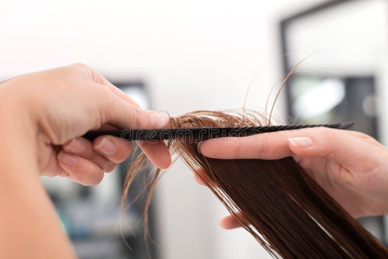 Το επαγγελματικό νέο hairstylist την εξυπηρετεί στοκ εικόνες