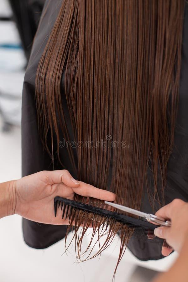 Το επαγγελματικό hairstylist κάνει το κούρεμα στο α στοκ εικόνα με δικαίωμα ελεύθερης χρήσης