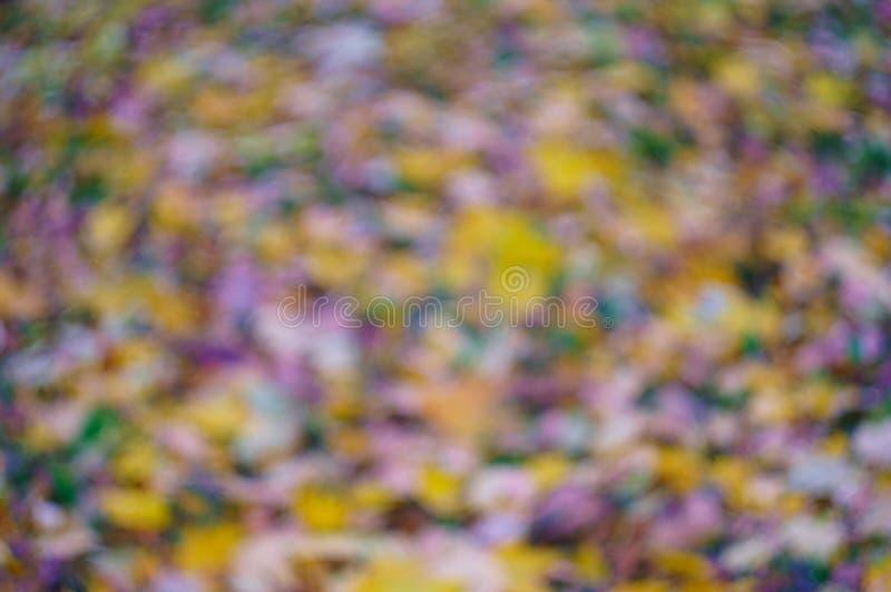 Το ετερόκλητο υπόβαθρο από το πεσμένο φύλλωμα o Η εικόνα είναι από την εστίαση, μουτζουρωμένη στοκ φωτογραφία