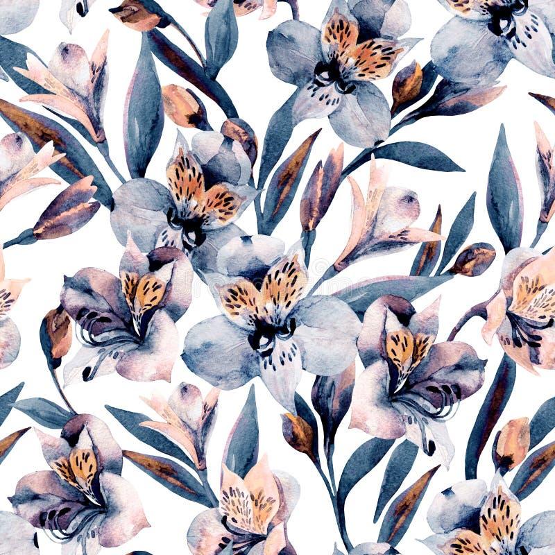 Το ευμετάβλητο alstroemeria watercolor ανθίζει το άνευ ραφής σχέδιο ελεύθερη απεικόνιση δικαιώματος