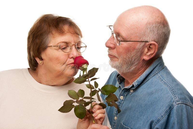 Το ευτυχές ανώτερο δόσιμο συζύγων κόκκινο ανήλθε στη σύζυγο στοκ εικόνες