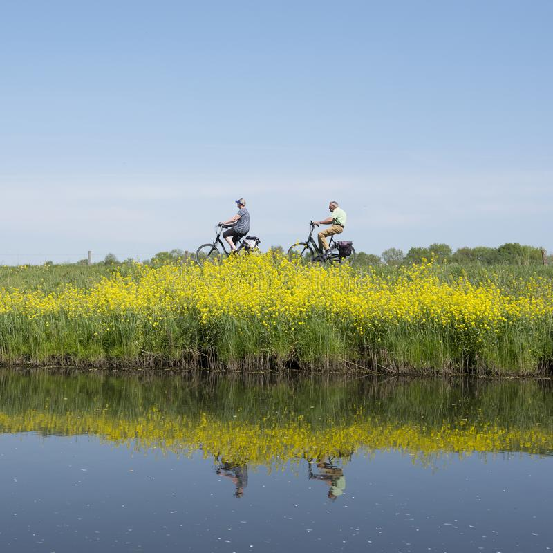 Το ζεύγος οδηγά το ποδήλατο κατά μήκος του νερού valleikanaal κοντινού στην Ολλανδία και τα κίτρινα ανθίζοντας λουλούδια περασμάτ στοκ φωτογραφία