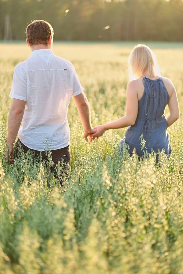 Το ζεύγος πηγαίνει σε έναν τομέα στα χέρια εκμετάλλευσης ηλιοβασιλέματος, πράσινη ψηλή χλόη στοκ φωτογραφία
