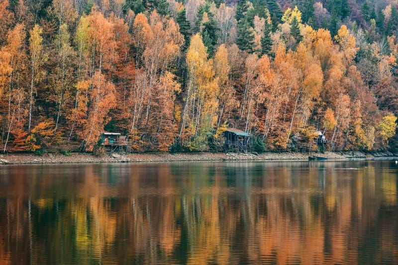 Το ζωηρόχρωμο φυσικό δάσος φθινοπώρου απεικονίζει στο νερό στοκ εικόνες