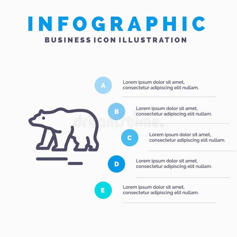 Το ζώο, αντέχει, πολικός, εικονίδιο γραμμών του Καναδά με το υπόβαθρο infographics παρουσίασης 5 βημάτων απεικόνιση αποθεμάτων