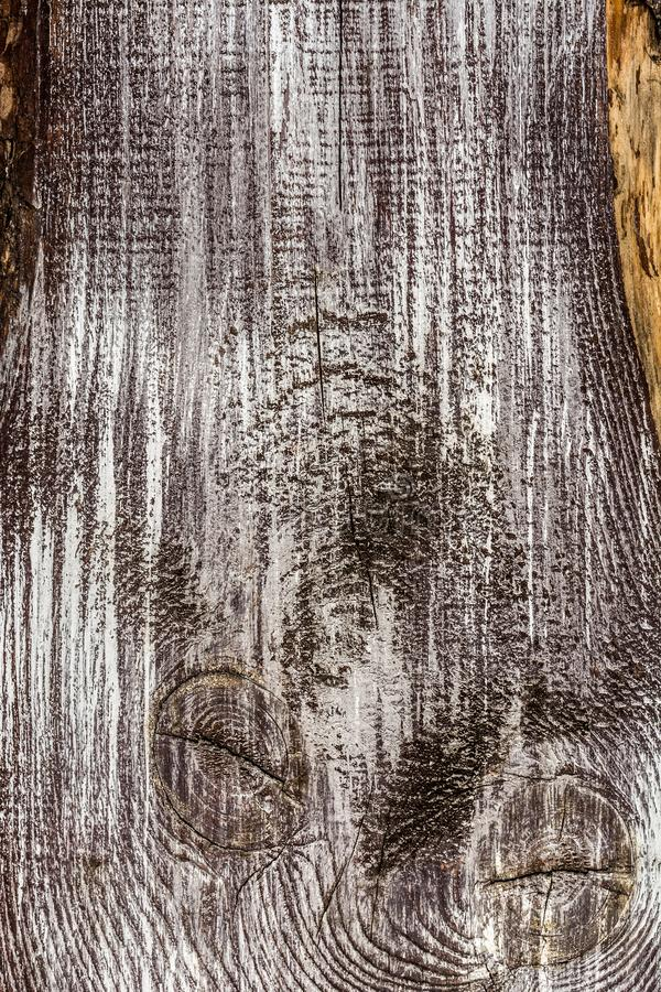 Το ηλικίας και ξεπερασμένες γκρίζες μαύρες ξύλινες υπόβαθρο και η σύσταση ύφους τοίχων εκλεκτής ποιότητας αναδρομικές στοκ φωτογραφίες με δικαίωμα ελεύθερης χρήσης
