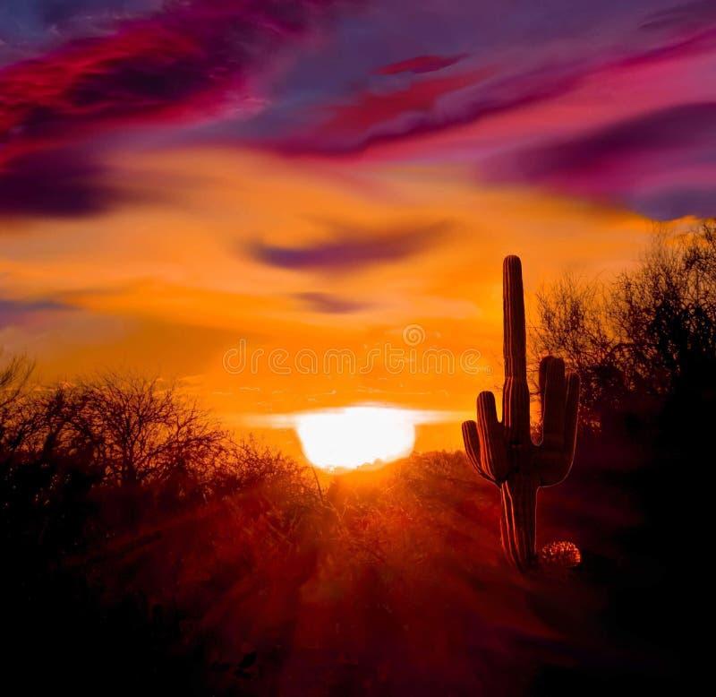 Το ηλιοβασίλεμα της Αριζόνα ένας καμμένος ήλιος εγκαθιστά στην έρημο της Αριζόνα στοκ φωτογραφίες
